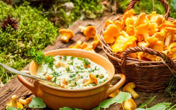 Бесплатные фото грибы,лисички,ложка,сметана,петрушка,стол,еда