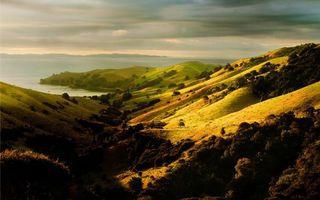 Бесплатные фото холмы,трава,деревья,вода,море,тучи,природа