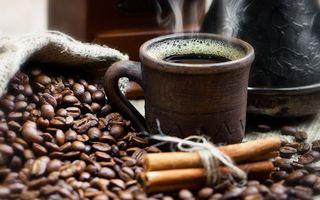 Бесплатные фото кофе,зерна,чашка,кружка,пенка,пар,корица