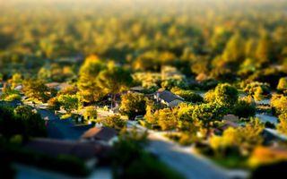 Бесплатные фото пригород,дома,деревья,крыши,фото,газон,лето