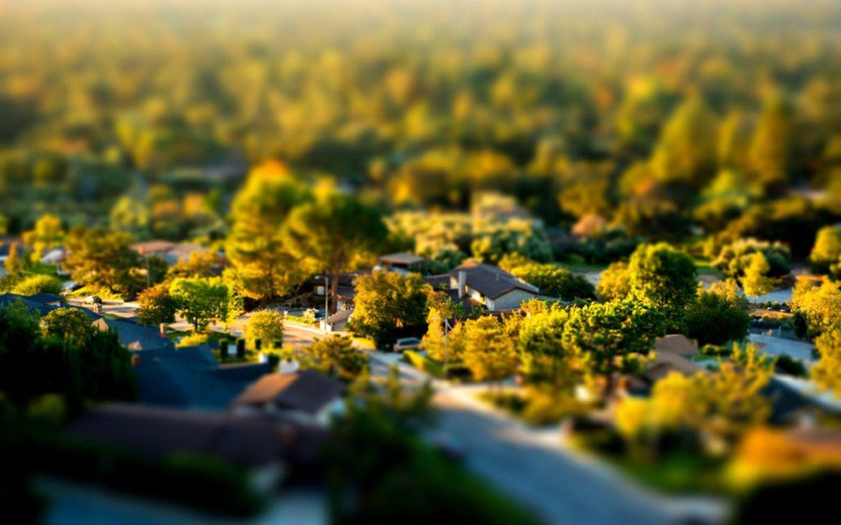 Обои пригород, дома, деревья картинки на телефон