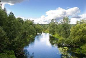 Бесплатные фото река,течение,деревья,кустарник,трава,небо,облака