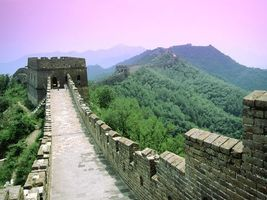 Бесплатные фото стена,высокая,красивая,природа,лес,зелень,высоко