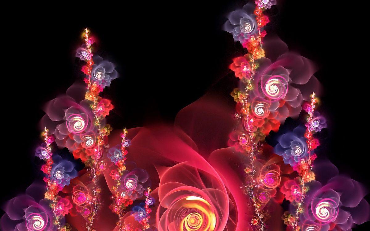 Фото бесплатно цветы, графика, огонь, свет, цвета, разноцветный, бутоны, лепестки, фон, черный, абстракции, разное, разное