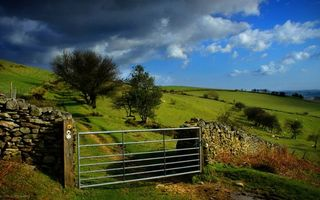 Бесплатные фото загон,ворота,ограда,каменная,пастбище,овечки,деревья