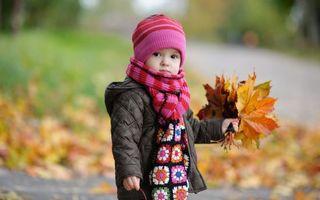 Заставки ребенок, мальчик, осенью, играет, листопад, шарф, шапочка, разное