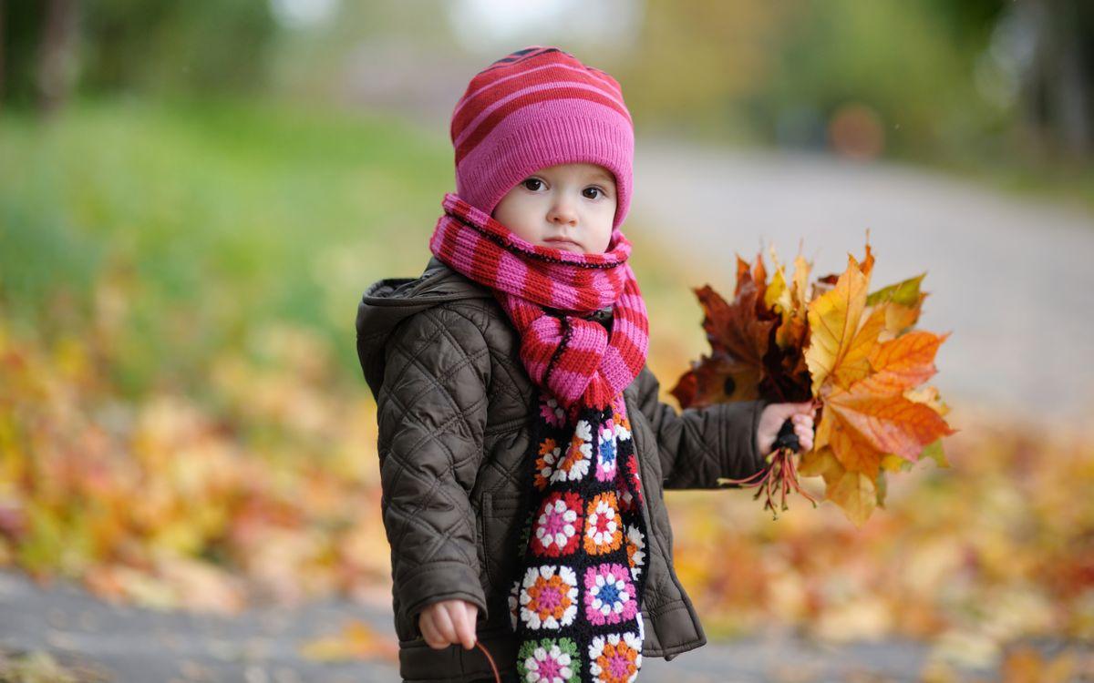 Фото бесплатно ребенок, мальчик, осенью, играет, листопад, шарф, шапочка, разное, разное