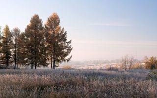 Заставки поле, холмы, туман