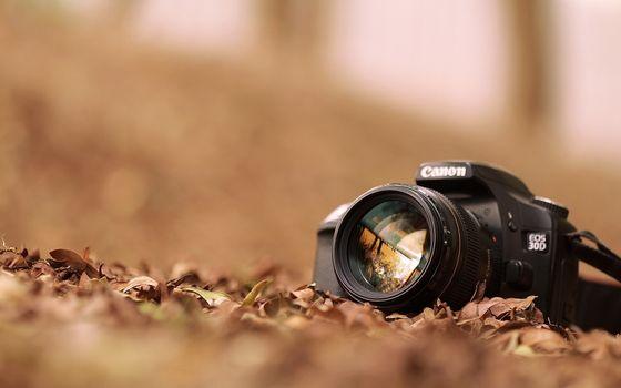 Бесплатные фото фотоаппарат,кэнон,зеркалка,листья,отражение,объектив,разное