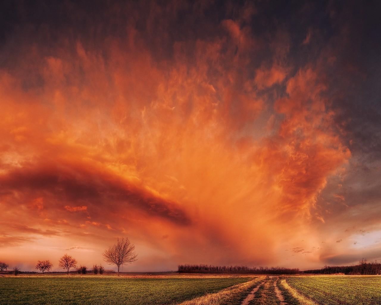 Обои облака, небо, поле, дорога
