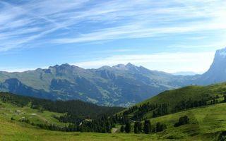 Бесплатные фото поляна,лес,деревья,трава,горы,небо,облака