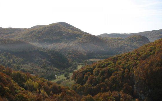 Фото бесплатно равнина, плоскогорье, деревья, листья, трава, пейзажи, природа