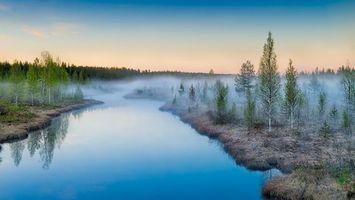 Бесплатные фото тайга,деревья,река,туман,небо,природа,пейзажи
