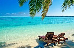 Фото бесплатно пляж, тропики, бунгало