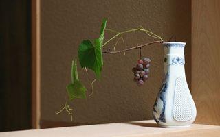 Бесплатные фото виноград,ветка,ваза,ягоды,стол,стена,комната