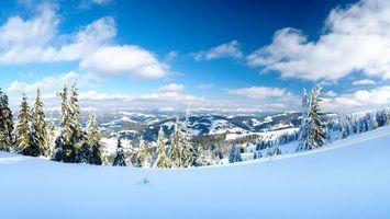 Бесплатные фото зима,горы,снег,елки,пейзажи