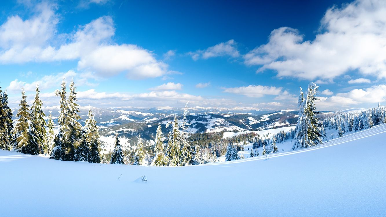 Картинка зима, горы, снег, елки, пейзажи на рабочий стол. Скачать фото обои пейзажи