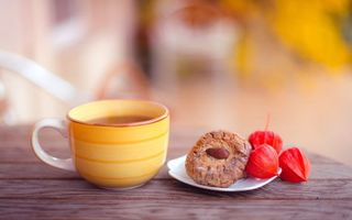 Фото бесплатно чашка, чай, блюдце, печенье, орех, стол, разное