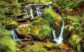 Фото бесплатно камни, вода, ручей