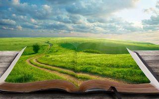 Фото бесплатно книга, поле, трава