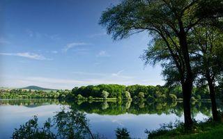 Бесплатные фото озеро,дерево,поселок,крыши,дома,берег,лето
