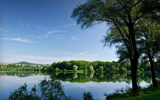 Фото бесплатно озеро, дерево, поселок