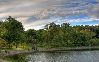 Бесплатные фото озеро,вода,лес,деревья,трава,природа,небо