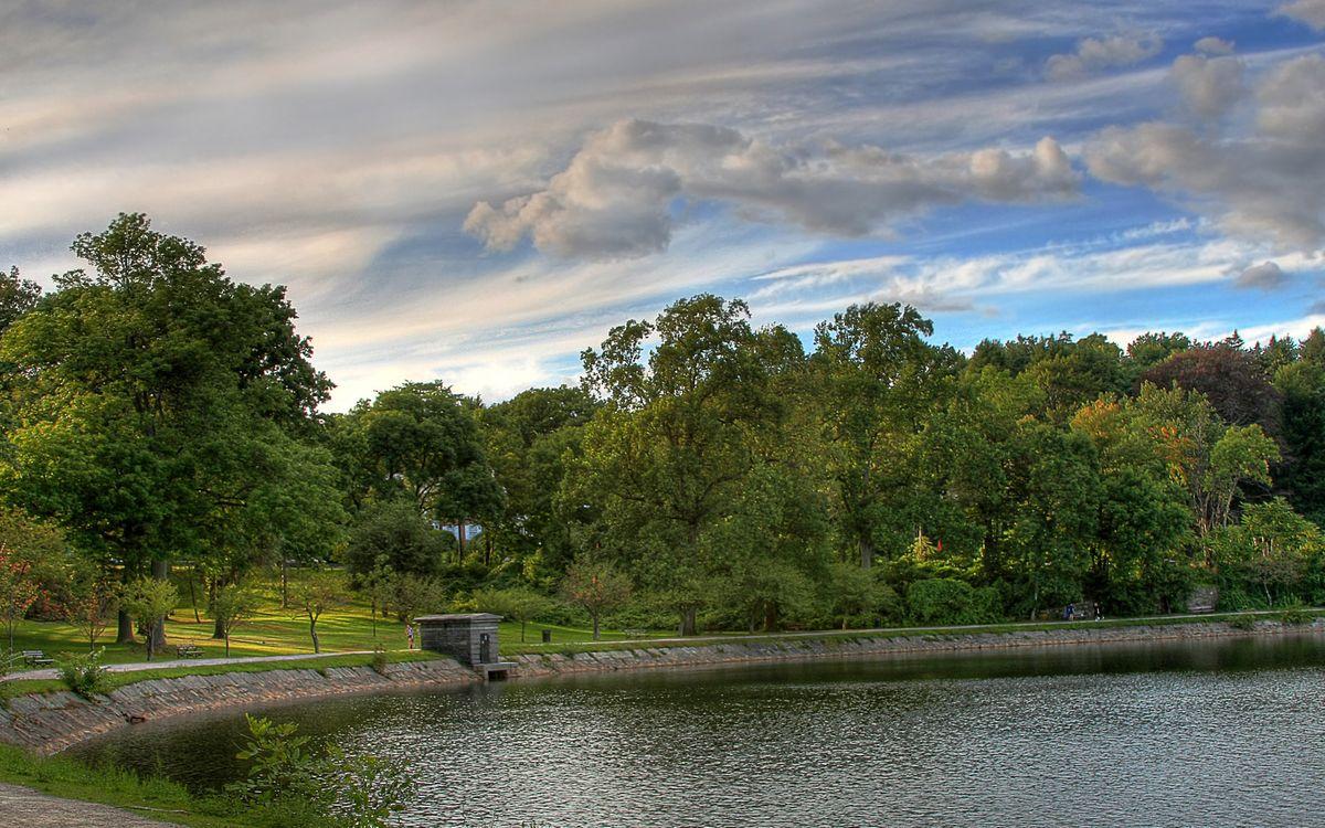 Фото бесплатно озеро, вода, лес, деревья, трава, природа, небо, разное - скачать на рабочий стол