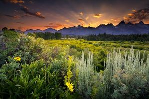 Фото бесплатно usa, grand teton national park, snake river
