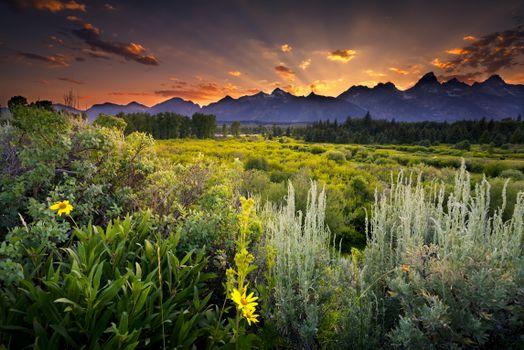 Бесплатные фото usa,grand teton national park,snake river,wyoming,природа