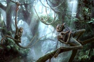 Фото бесплатно существа, лес, kenbarthelmey, фантастика, деревья, арт