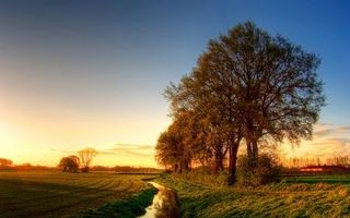 Фото бесплатно деревья, поле, дорога, небо, голубое, облака, трава, ручей, зелень, дом, куст, лето, пейзажи, природа
