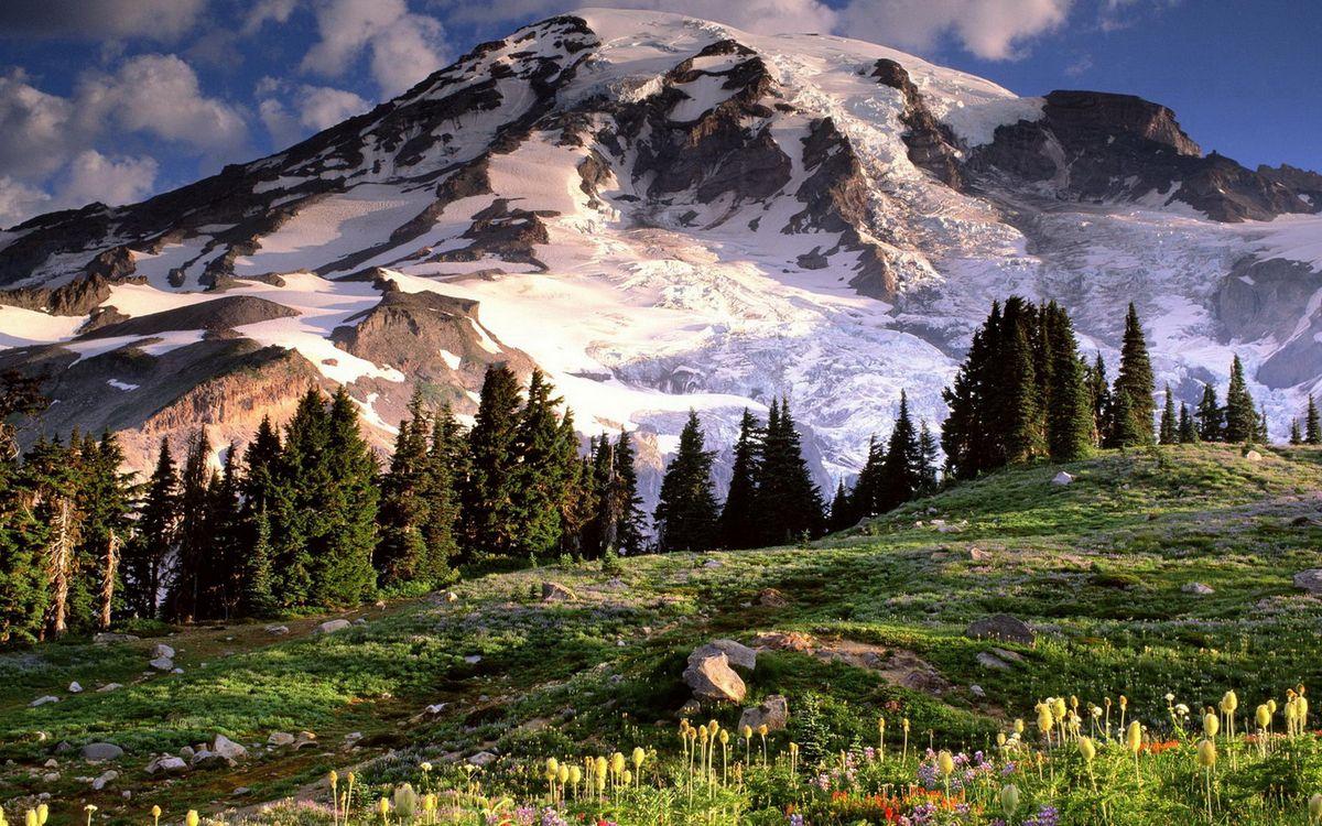 Фото бесплатно гора, снег, елки - на рабочий стол