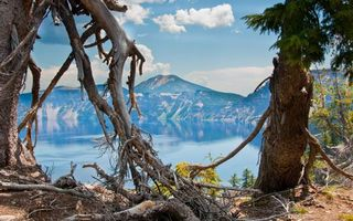 Бесплатные фото озеро,горы,небо,облака,коряга,деревья,пейзажи