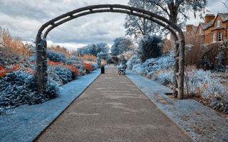 Бесплатные фото парк,сад,арка,деревья,листья,дорожка,асфальт