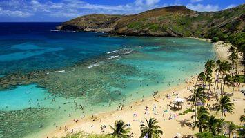 Бесплатные фото пляж,океан,небо,высота,пальмы,люди,отдых