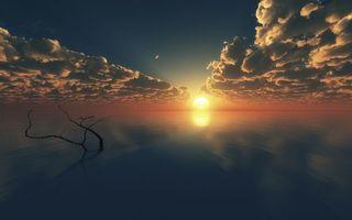 Заставки закат, небо, облака, вечер, сумерки, солнце, деревья, ветки, горизонт, природа, пейзажи