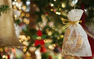 Бесплатные фото новый год, настроение, гирлянда, огни, елка, праздник
