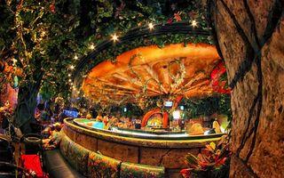 Фото бесплатно бар, кафе, стойка