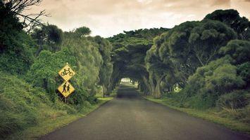 Бесплатные фото дорога,асфальт,знаки,трава,деревья,небо