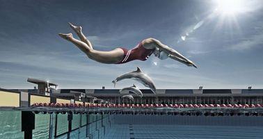 Бесплатные фото пловчиха,прыжок,нырок,в воду,бассейн,дельфины,спорт