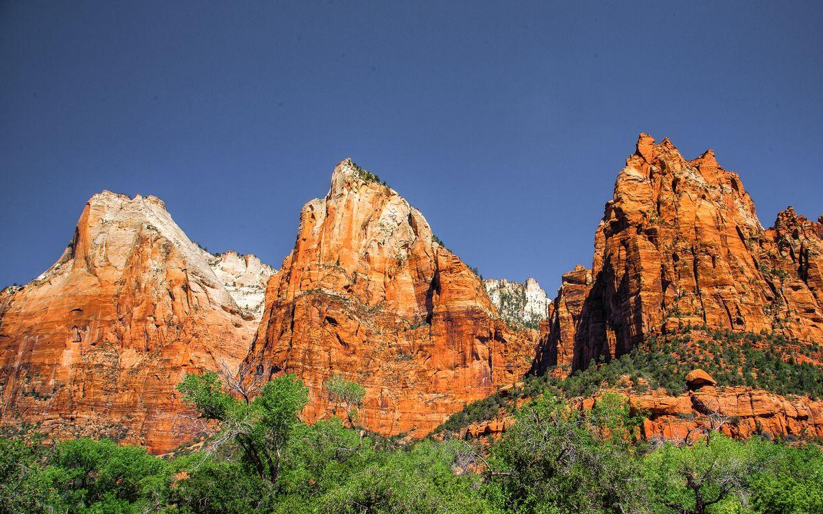 Фото бесплатно горы, скалы, обрыв, деревья, трава, небо, природа, природа