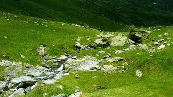Фото бесплатно вода, камни, течение