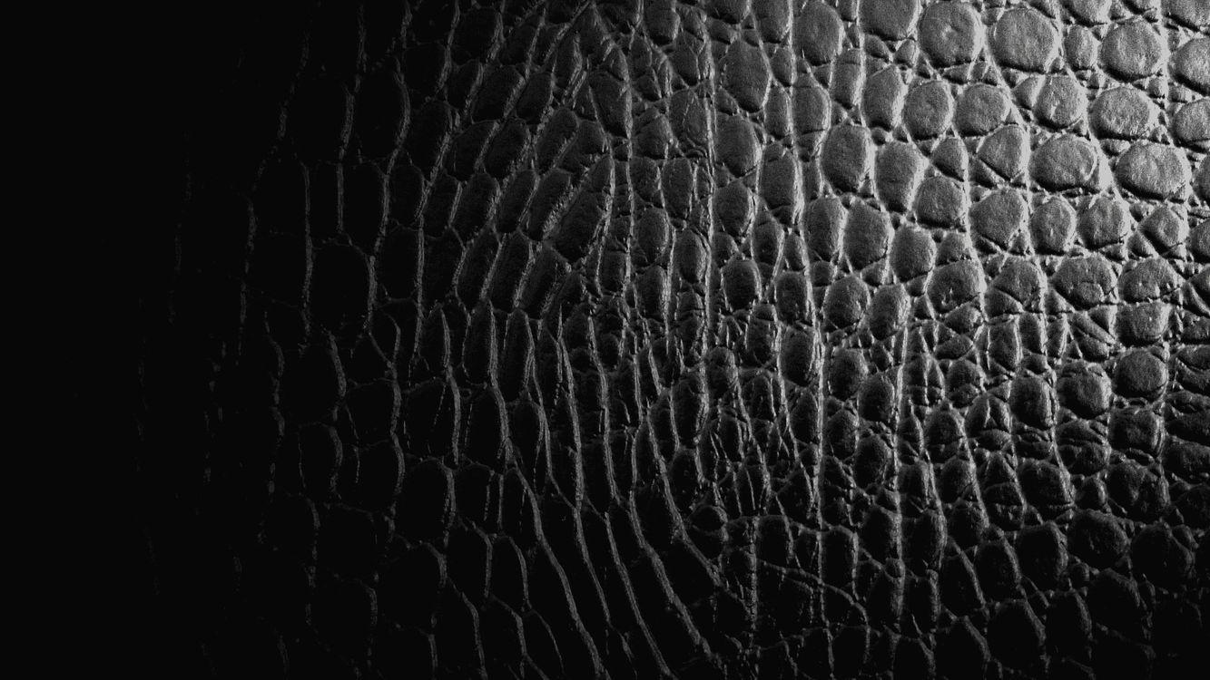 Фото бесплатно кожа, черная, коричневая, крокодилья, узор, орнамент, текстуры, текстуры
