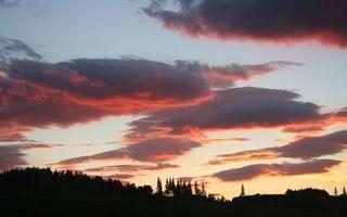 Фото бесплатно облака, лес, зарево