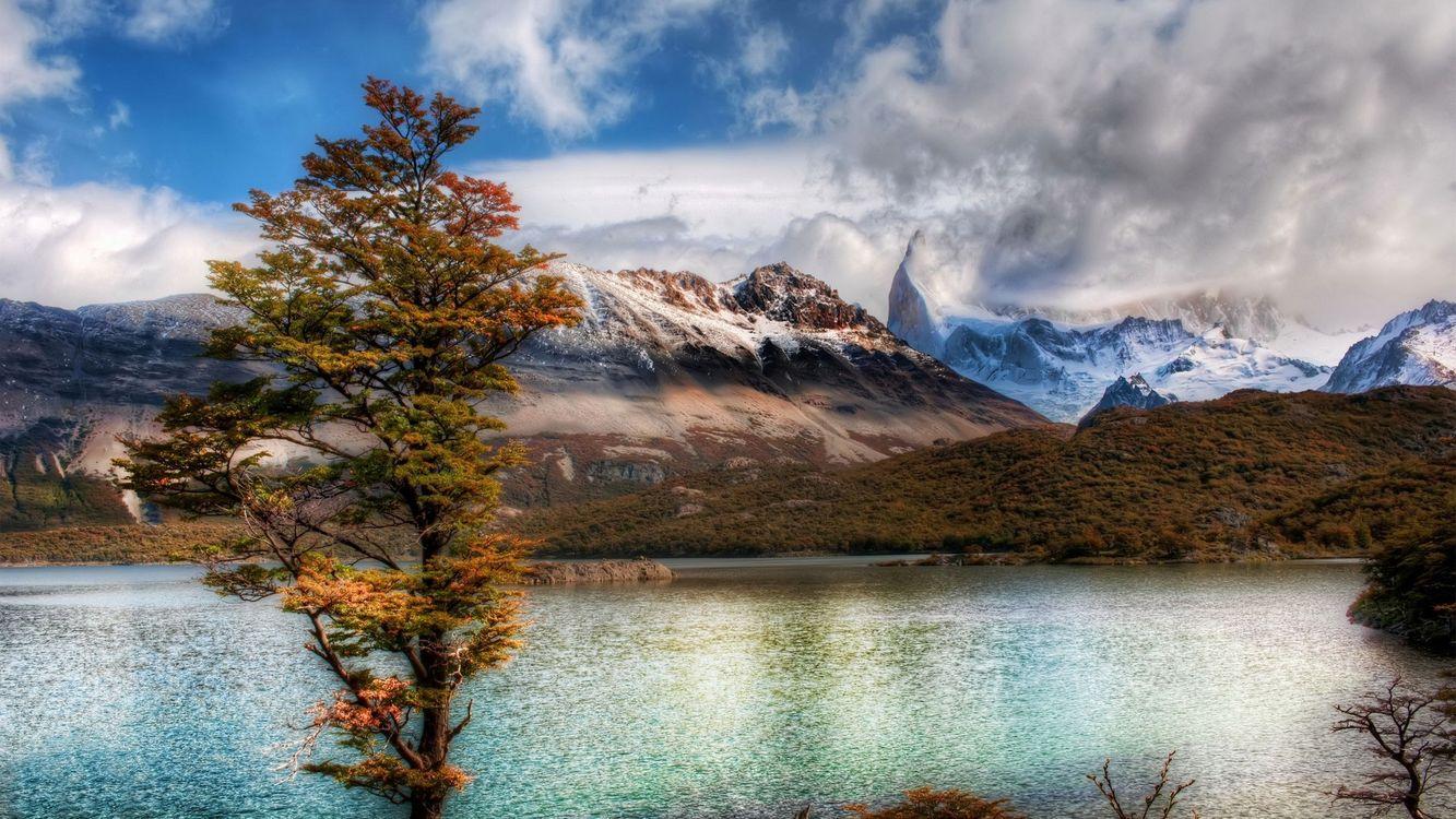 Фото бесплатно озеро, дерево, горы, осень, облака, снежные вершины, пасмурно, пейзажи, пейзажи