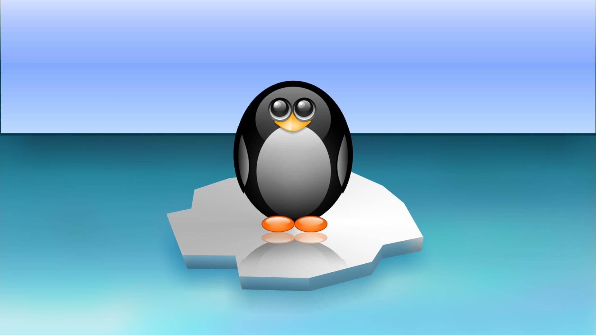 пингвин, льдина, море