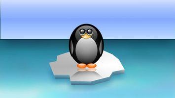 Бесплатные фото пингвин,льдина,море,небо,просто,смешно,3d графика