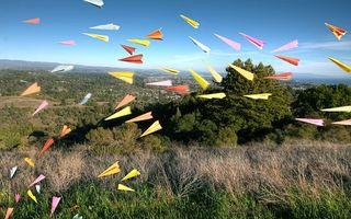 Бесплатные фото поле,самолетики,бумажные,деревья,трава,луг,небо