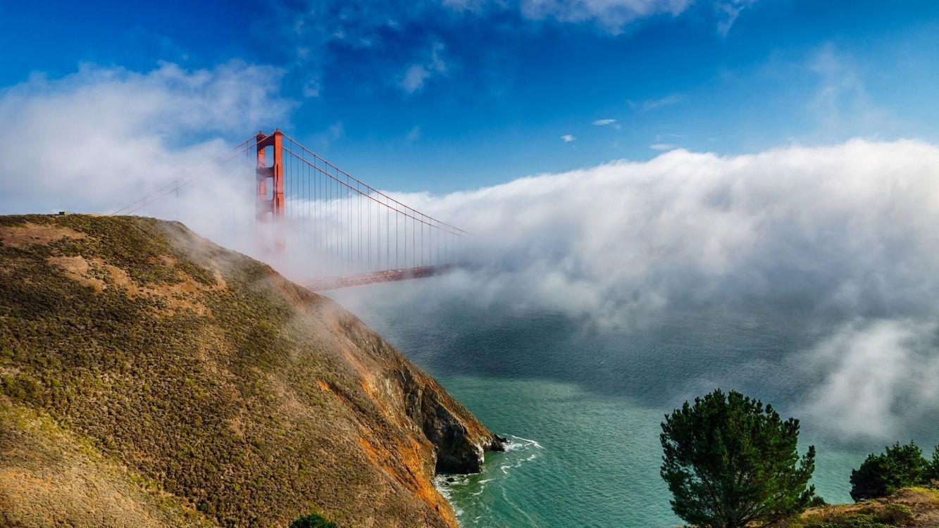 Фото бесплатно река, туман, мост - на рабочий стол